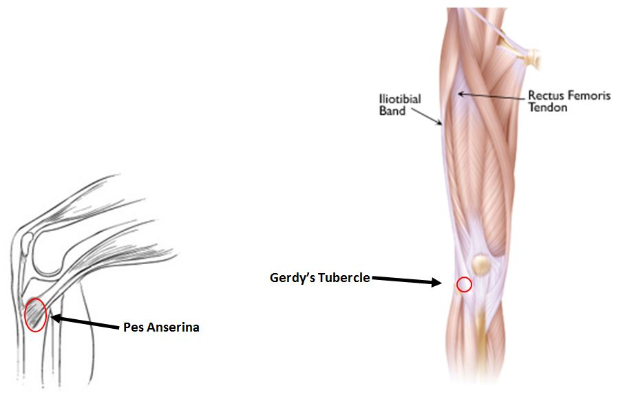 knee-injury-blog